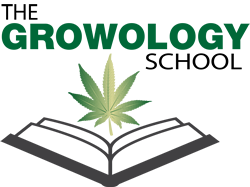 Marijuana  Training School